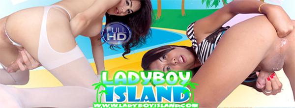 Enter ladyboyisland here